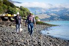 Akaroa residents Patsy Dart, left, and Mike Norris walk their dogs along the rocky shoreline. Photo / Mike Scott