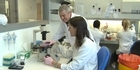 Watch: Watch: Scientists research the use of T-cells to kill cancer cells