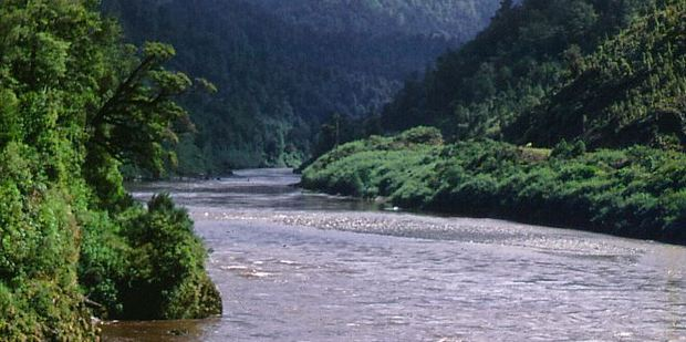 The car reportedly went missing in the Buller River.