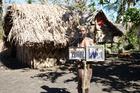 Albi Nagia poses with photographs of Prince Philip in Yakel, Tanna island, Vanuatu. Photo / AP