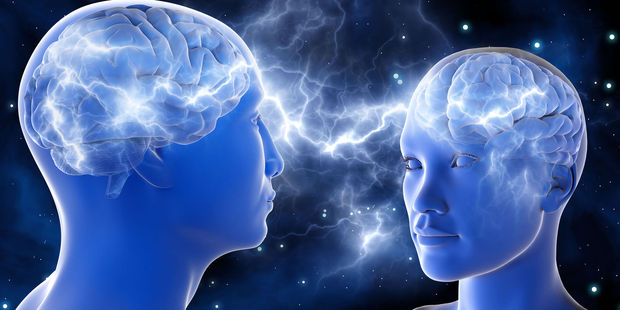 Research from the Netherlands based on MRI scans of almost 900 men and women found male brains are around 14 per cent larger. Photo / 123RF