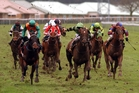 Another slog through deep ground at Trentham, just one of many tracks affected by heavy winter rainfall.  Photo / File