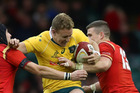 Australia and Wales have drawn each other in Pool D. Photo /Getty