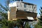 The tree hut, constructed in a wilding pine at Arawata Terrace, in Queenstown has been felled by the landowner. Photo / ODT