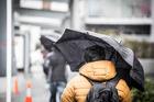 Umbrellas in Auckland CBD. Photo / Michael Craig