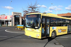 Improved BayHopper bus services are planned for Tauranga's suburbs. Photo/file