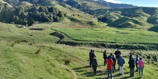 Queen Elizabeth II National Trust helps private landowners in New Zealand permanently protect special natural and cultural features on their land with open space covenants.