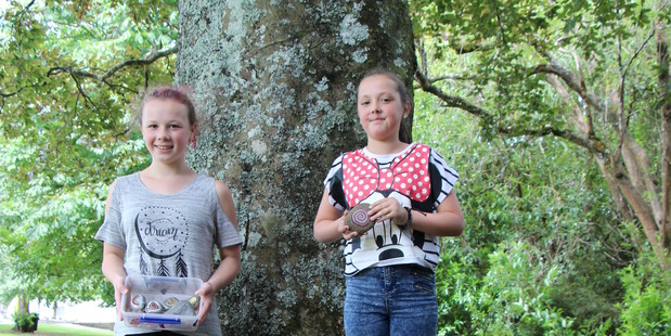 Youngsters are painting, finding and hiding rocks in parks and playgrounds all around Taranaki as part of this fun game.