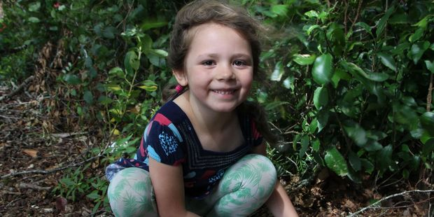 Greta Webby (6) and her sisters have been busy these school holidays, painting, hiding and hunting rocks all around Taranaki.