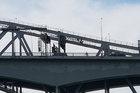 A woman cycling across Auckland's Harbour Bridge is proving to be a nuisance to traffic.