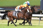 Hall of Fame, outer, downs Savile Row, blue cap, and Jon Snow. Photo / Race Images PN