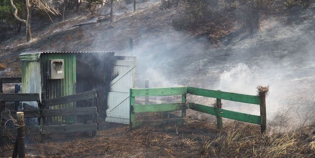 Damage caused by a fire at Mahanga on Mahia Peninsula.  Photo / David Trubridge