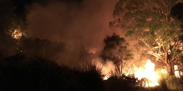 A number of suspicious or carelessly-lit fires, like this one at Pipiwai on Saturday has sparked a total fire ban across Northland.