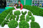 The Irish Origin Green initiative helps Ireland sell food in the same markets the New Zealand primary sector supplies.
