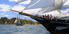 View: Sailing spectacle in Bay of Islands