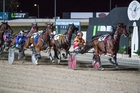 Smolda (blue colours) on his way to winning the South Australian Cup on Saturday night. Photo / Matt Loxton