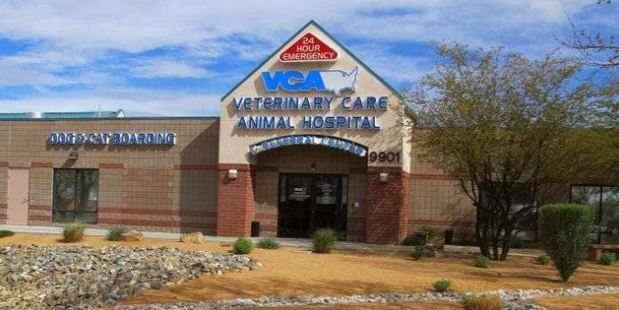 VCA Veterinary Care Animal Hospital and Referral Center. Photo / Google Maps