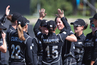New Zealand players celebrate an Australian wicket during their series in the summer. Photosport