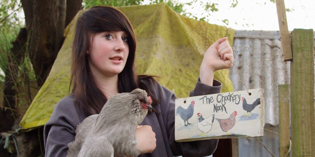 Loading A scene from Pecking Order, the new 'flockumentary' that follows a group of Christchurch chicken fanciers.