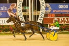 The Orange Agent will need to justify red hot favouritism in the final leg of the triple crown at Melton on Saturday. Photo / File