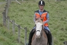 Equestrian community wants law to slow down motorists.