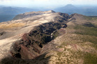 Weed control on Mt Tarawera was one intiaitive awarded funding in previous years.  Photo/File