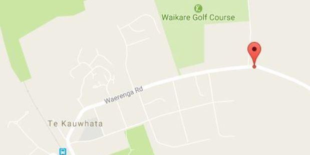 The crash happened on Waerenga Rd near Te Kauwhata in Waikato.