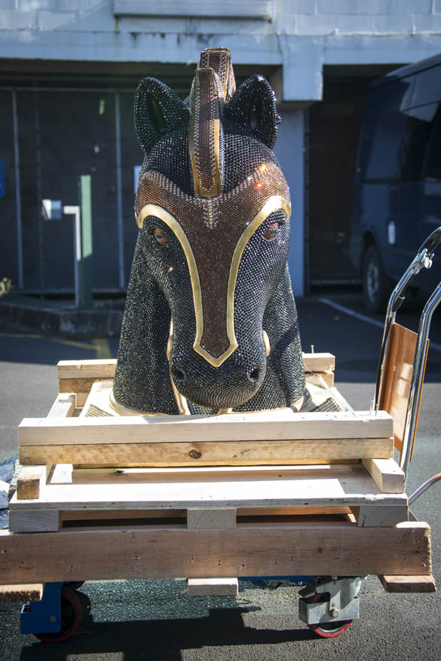 The diamante-encrusted horse head statue arrived by plane from Mexico. Photo / Jason Oxenham
