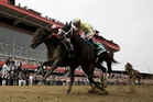 Cloud Computing, ridden by Javier Castellano (left), wins the 142nd running of the Preakness Stakes at Pimlico yesterday. Photo / AP