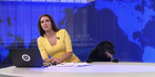 Dog interrupts live news broadcast