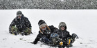 Sledging down Wakari Hospital Grounds, Dunedin, in the snow is from rear Ryan Jamieson (11) Kailen Beattie (12) and Liam Gillies (12) on Saturday. Photo / Peter McIntosh