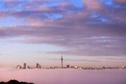 Fog blanketed Auckland City on Thursday morning, with the 8am sun bathing the city in watercolours. Photo/Kelly Peteru