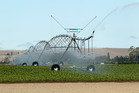 Green groups have slammed Budget funding for irrigation schemes. Photo / File