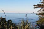 A view out across the bay, in Oakura, Taranaki. Photo / Sadie Beckman