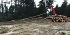 Ground conditions around the time logging was being carried out near the dams for the Marton water supply.