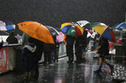 Ditch your brollies when you come to Toll Stadium on Saturday and instead don your raincoat. PHOTO/NZME