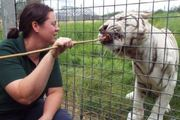 Hamerton Zoo Park says an investigation is under way into the death of Rosa King. Photo / via Facebook