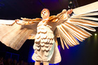 This is the costume Whangarei Mayor Sheryl Mai will take flight in at the Russell Birdman Jump. Photo/Sarah Marshall