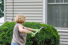 Start out front, cleaning, clearing and decluttering the yard to make a good impression on buyers. Photo / Getty