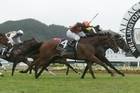 Savaria (inner) holds off Jacksstar to win the Wellington Cup at Trentham yesterday. Photo / Trish Dunell