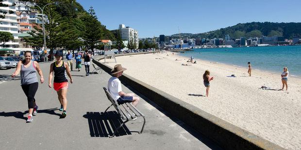 Oriental Bay in Wellington. Photo / 123RF