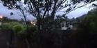 Watch: Raw: Windy Wellington city