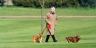 Queen Elizabeth II walking her dogs at Windsor Castle. Photo / Getty Images