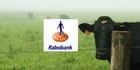 Watch: Rabobank Best of The Country - 21st January 2017