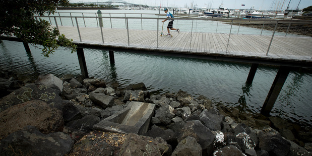 Loading Raw sewage overflows after heavy rain next to the new Westhaven boardwalk at St Mary's Bay. Photo / Dean Purcell