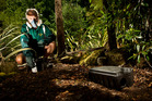 PESTS: Bay Pest Services manager Chris Brunel with rodent baiting equipment. PHOTO/STEPHEN PARKER
