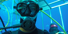 Sadie Whitelocks cage diving with great white sharks in Mexico. Photo / Sadie Whitelocks