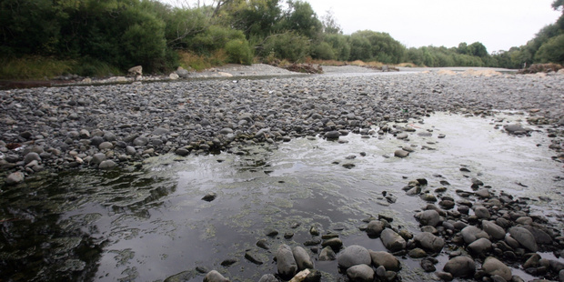 The Ruamahanga River in Wairarapa has been constantly plighted by heath warnings and pollution issues. Photo / File