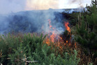 A total fire ban in the Central Hawke's Bay region has come after a spate of scrub fires in recent weeks.