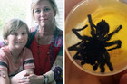 Fiona Donagh with her son Oscar. And the spider that almost killed her. Photos / CATERS